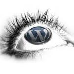 Wordpress Development Secrets
