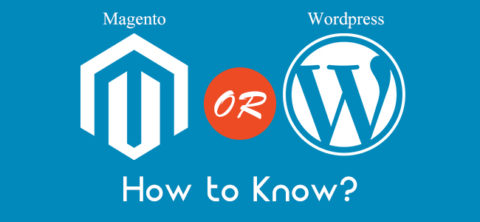 Wordpress or Magento Development Services Which is better for Ecommerce
