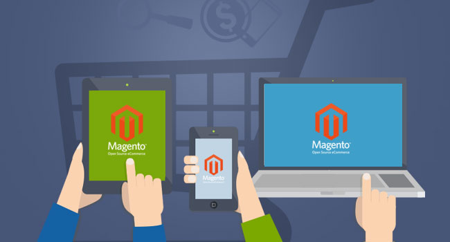Build Your Ecommerce Store with $1000 Using Magento