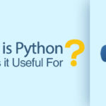 What Is Python? What Is It Useful For?
