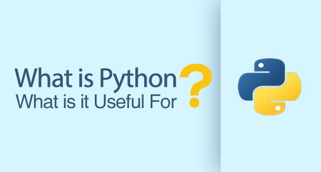 python django development company