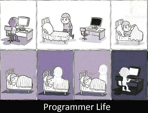 Programming Memes 2018