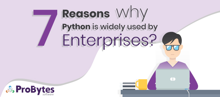 python enterprise development