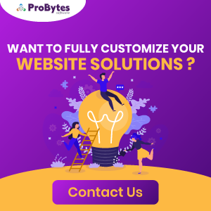 want-to-fully-customize-your-website-solution